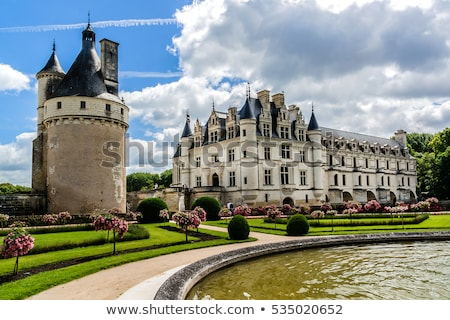 Chateau de Chenonceau Stock photo © tilo