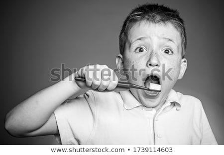 歯 歯ブラシ モデル 人間 顎 孤立した ストックフォト © smuki