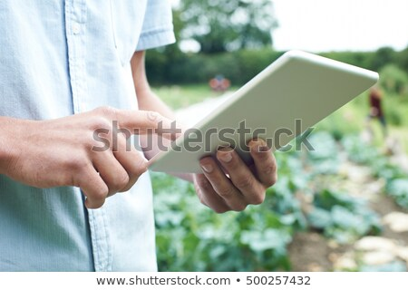 close up of farmer using digital tablet on organic farm stock photo © highwaystarz