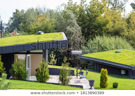 плитка · крыши · дома · структуры · здании · домой - Сток-фото © lianem