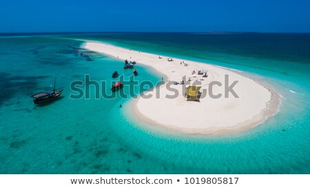 песчаный пляж песок банка Танзания воды морем Сток-фото © lkpro