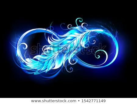 Phoenix veer vlammende zwarte brand Stockfoto © blackmoon979