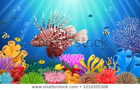 Underwater scene with lionfish Stock photo © bluering