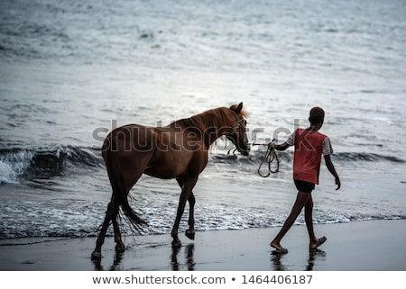Man with horse in sea  Stock photo © bezikus