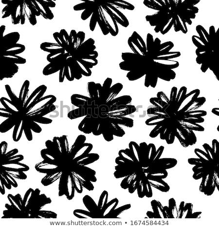 フィールド · ヒナギク · 野の花 · 花 · 自然 · 風景 - ストックフォト © mythja
