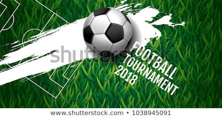 Stockfoto: Blauw · voetbal · gras · veld · groen · gras · heldere