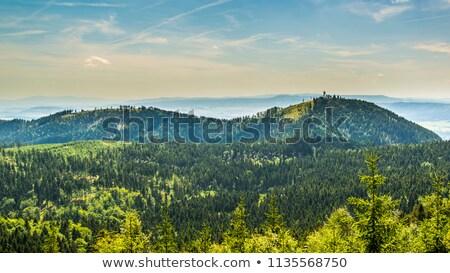 Görmek manzara güzellik yaz yeşil dağlar Stok fotoğraf © Hochwander