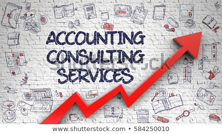 Accounting Consulting Services Concept. 3D render. Stock photo © tashatuvango