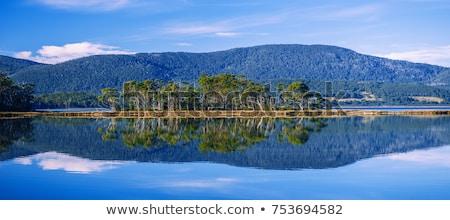 Ver ilha praia tarde tarde tasmânia Foto stock © artistrobd