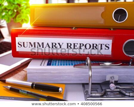 Red Ring Binder with Inscription Summary Reports. Stock photo © tashatuvango