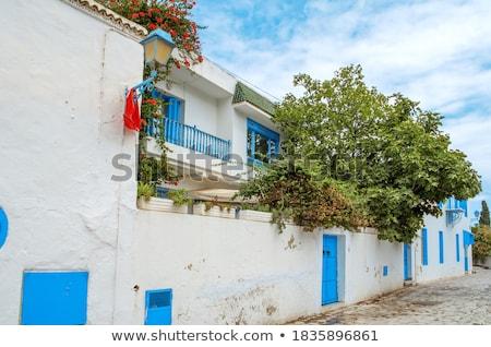 Typical mediterranean facade architecture style Stock photo © stevanovicigor
