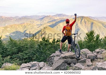 Mountain biker success, looking at mountains view stock photo © blasbike