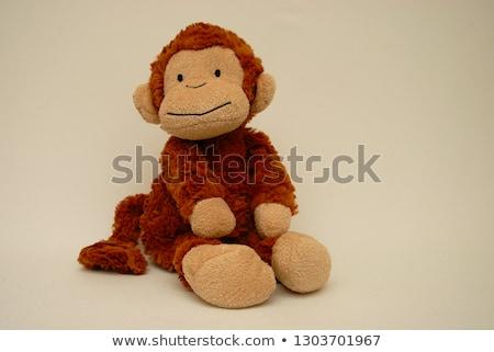 monkey soft toy stock photo © is2