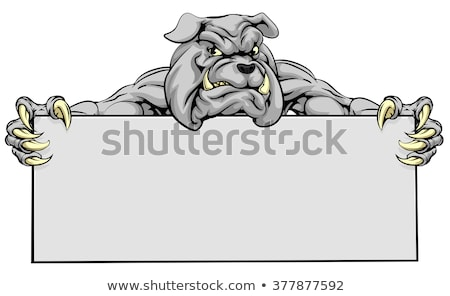 brown bulldog cartoon mascot character holding a sign with text pet shop stock photo © hittoon