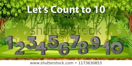 10 джунгли сцена иллюстрация трава фон Сток-фото © bluering