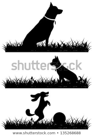 Сток-фото: Cartoon · пастух · мяча · иллюстрация · улыбаясь · графических