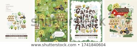 çiftlik · hayvanları · çiftçi · poster · örnek · Bina · arka · plan - stok fotoğraf © robuart