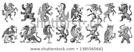 Dragon Heraldic Crest Coat of Arms Emblem Shield Stock photo © Krisdog