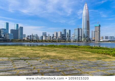 Dubai skyline with green lawn park Stock photo © karandaev