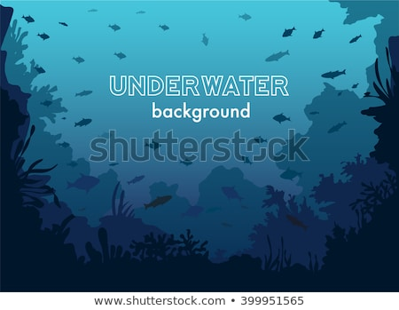 Ocean Underwater Background with Fishes, Sea plants and Reefs. Vector Stock photo © Andrei_