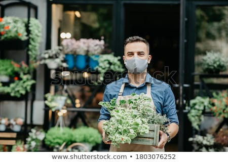 man working as florist in flower shop arranging plants stock photo © diego_cervo