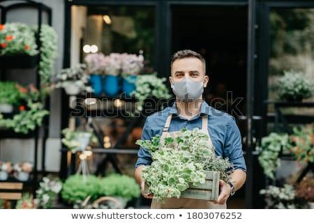 Man Working As Florist In Flower Shop Arranging Plants Stock photo © diego_cervo