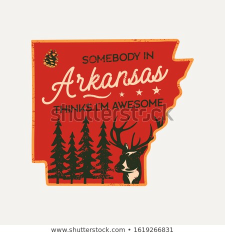 Vintage Arkansas badge. Retro style US state patch, print for t-shirt and other uses. Included quote Stock photo © JeksonGraphics