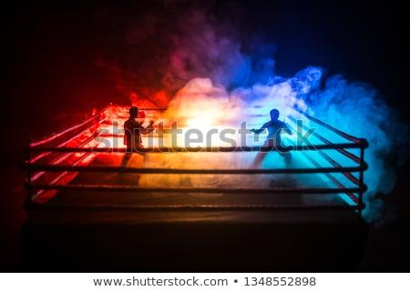 Jelenet sportolók harcol gyűrű aréna illusztráció Stock fotó © bluering
