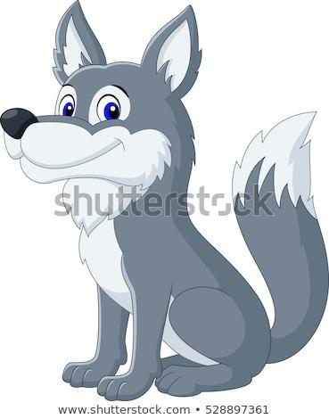 gray wolf cartoon wild animal character Stock photo © izakowski