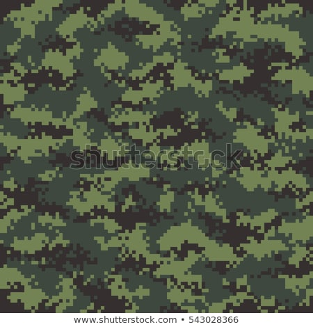 Modern pixelated camouflage seamless pattern to disguise in forest Stock photo © evgeny89