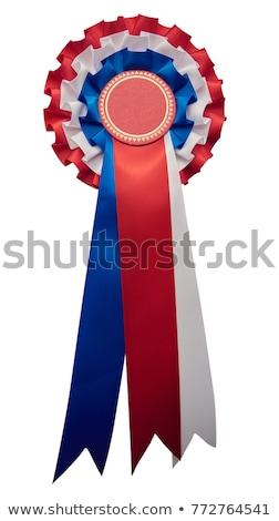 Bajnok izolált szó fehér tárgy díj Stock fotó © RTimages