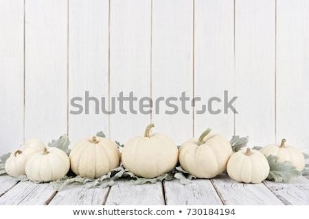 Pumpkin on White Stock photo © markross