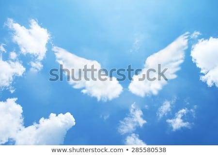 Lány angyal szárny cosplay öltöny fekete Stock fotó © zybr78