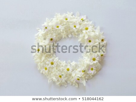 Ellipse frame with white flowers Stock photo © boroda