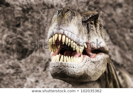 Tyrannosaurus showing his toothy mouth Stock photo © ia_64