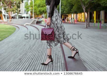 güzel · bir · kadın · hayvan · baskı · elbise · gülen · büyük - stok fotoğraf © stryjek
