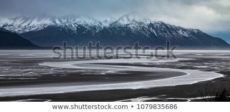 Alaszkai hegy terjedelem Alaszka vadon természet Stock fotó © cboswell