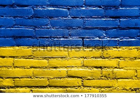флаг Украина кирпичная стена окрашенный Гранж текстуры Сток-фото © creisinger
