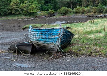 Secas para cima rio cama flor natureza Foto stock © pictureguy