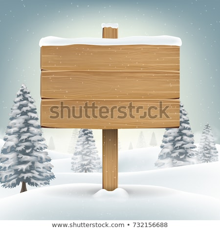an illustration of a blank winter sign, Stock photo © shutswis