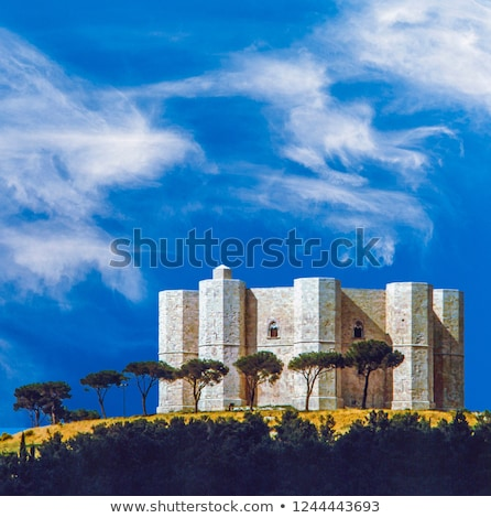 Castel del Monte is situated on a solitary hill in southeast Ita Stock photo © meinzahn