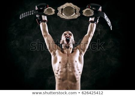 Kämpfen Champion Business Gold Krone blau Stock foto © Lightsource