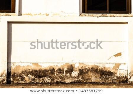 Straat muur filmstrip vintage textuur Stockfoto © deyangeorgiev