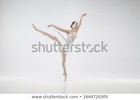 Gracioso como elegante mulher longo transparente Foto stock © blanaru