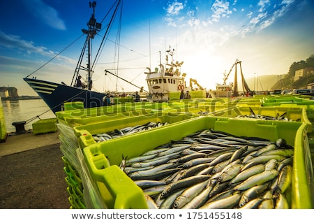 釣り · ポート · 表示 · 港 · 魚 · 風景 - ストックフォト © Aitormmfoto