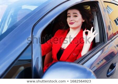 Plezier Rood verkeersbord opschrift hemel achtergrond Stockfoto © tashatuvango
