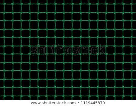 緑 魚網 小さな 女性 ボディ ストックフォト © disorderly