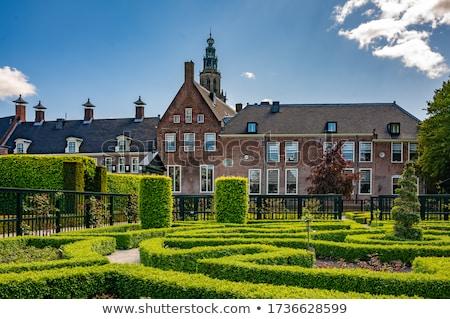 Maze in renaissance garden Stock photo © Hofmeester
