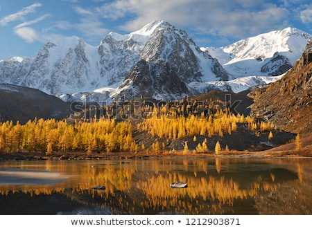 chuya river valley in the altai mountains stock photo © mikko