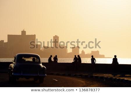 Gün batımı Küba sahil ada caribbean deniz Stok fotoğraf © prill